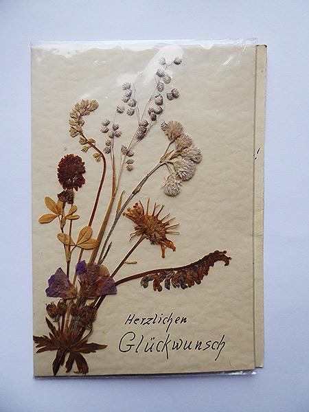 Glückwunschkarte mit gepreßten Blüten zu einem Strauß geklebt. In der Mitte ein Rispengras, welches man nicht mehr häufig sieht.