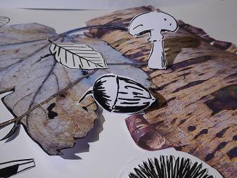 4b Fokus mit Eichel und Pilz mit Miniatureffekt (glaube ich wenigstens ;-) fotografiert.